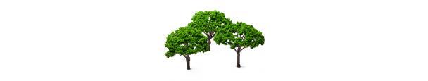 Scenery & Trees