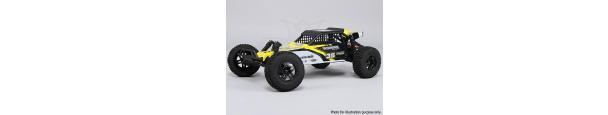 1/10 Brushless 2WD Desert Racing Buggy