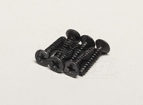 Nutech Flat Screw ISO3*15 (6pcs) - Turnigy Titan 1/5