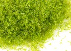 Scenic Foliage Material 250g (Light Green)