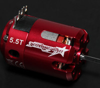 Turnigy TrackStar 5.5T Sensored Brushless Motor 6075KV (ROAR approved)