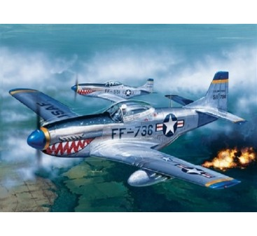 Italeri 1/72 Scale P-51D Mustang Plastic Model Kit