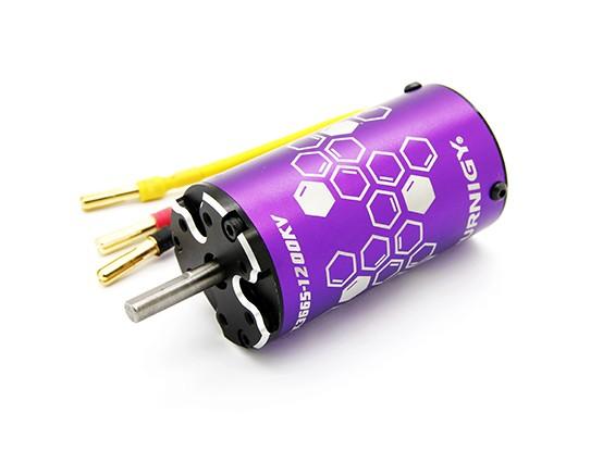 Turnigy XK3665-1200KV Sensorloze Inrunner