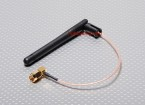 Antenne w / Extended Wire