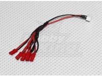 JST-XH naar JST LED Power Distribution Lead (6 JST)