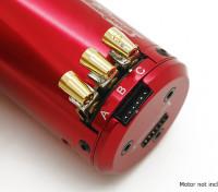 TrackStar Easy Fit borstelloze motor-connectoren (3 Sets)