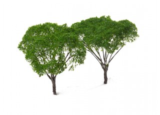 HobbyKing™ 120mm Dark Green Scenic Wire Model Trees (2 pcs)