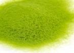 3mm Static Grass Flock - Medium Green (250g)