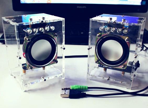 Kit de haut-parleur Active DIY avec étui blanc