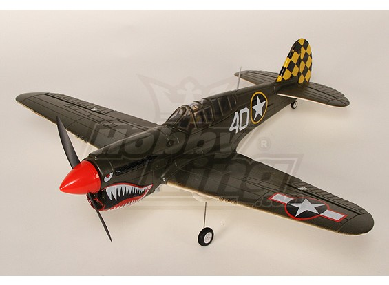 Mini P40 Model Airplane w / système Brushless OEB Plug-n-Fly