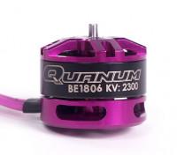 BE1806P 2300KV de couleur pourpre avec écrou de nylon violet (CCW)