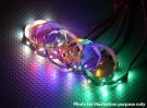 Bande de LED avec JST 200mm de connecteur (Rouge)