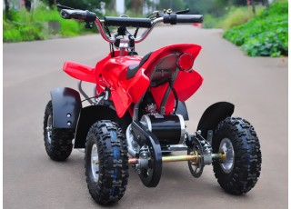 Electric Quad Bike Back view
