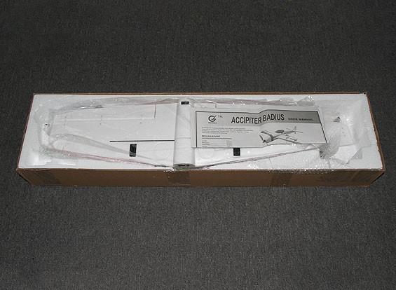 SCRATCH / DENT - F3A Patternish Schiff - 910mm (PNF)