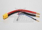XT60 Stecker Gurtzeug für 2S Lipo Hardcase (1pc)