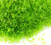 Scenic Foliage Material 250g (Medium Green)