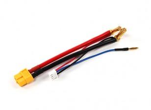 XT60 Stecker Gurtzeug für 2S Lipo Hardcase mit 5 mm Rundstecker und JST-XH (1pc)