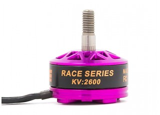 DYS Fire FPV Race Edition 2600KV Brushless Outrunner Motor (CWW)