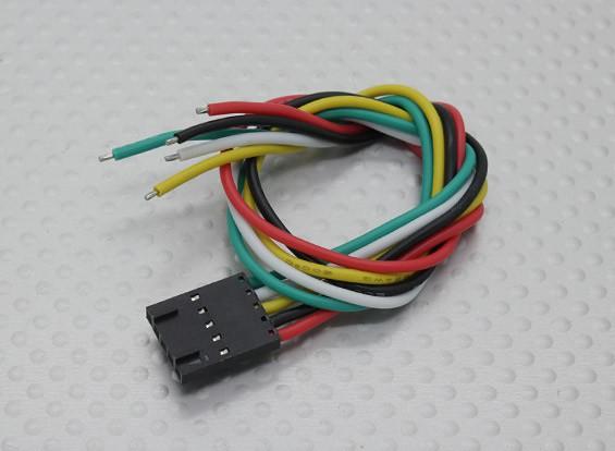 5 Pin Molex Conexión del cable (los juegos de Fatshark)