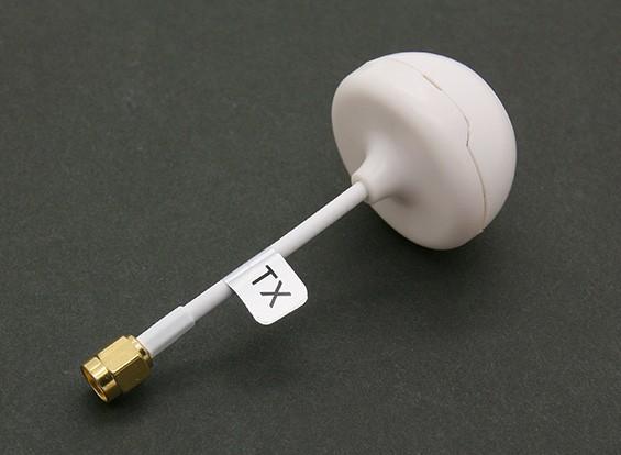 Circular 5.8GHz antena polarizada con la cubierta para el transmisor (SMA) (RHCP)