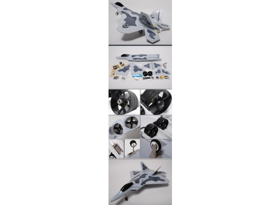 F-22 Raptor Jet w / Twin sin escobillas EDF