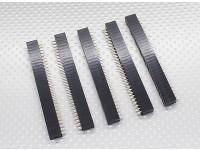 2x30P Pin Socket - 2,54 mm de paso (5pcs / bolsa)