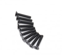 PC plano del metal Machine Head Tornillo hexagonal M2.5x14-10 / set