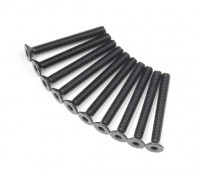 Plano del metal Machine Head Tornillo hexagonal M3x26-10pcs / set