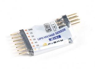 FrSky Mini Lipo voltaje del sensor SVSLM