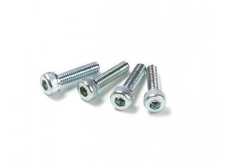 ASP 09A - Cylinder Screw 4pcs