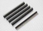 Spillo di intestazione 2 Row 30 Pin passo 2,54 mm (5PCS)