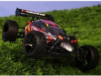 1/18 della scala 4WD RTR corre carrozzino