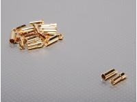 Polymax 5.5mm oro connettori 10 paia (20pc)