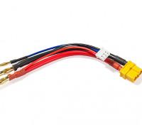 XT60 Plug cablaggio per 2S Hardcase Lipo (1pc)