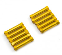 3x24mm alu. peso leggero supporto rotondo (oro)