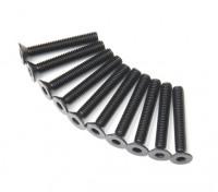 Metallo a testa piatta macchina Vite Esagonale M3x20-10pcs / set