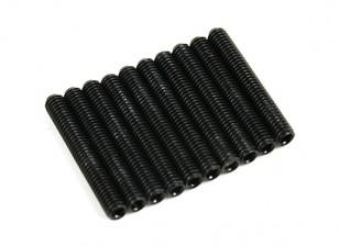Metallo Grub vite M3x24-10pcs / set