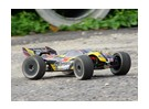 Basher Sabertooth 1/8 scala Truggy (ARR)