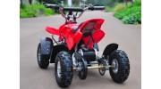 Electric Quad Bike Back view
