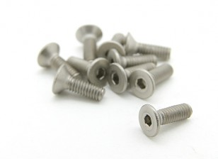 Titanium M2.5 x 8mm Countersunk Hex Screw (10pcs/bag)