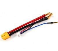 5ミリメートルブレットコネクタとJST-XHと2Sハードケースリポ用XT60プラグハーネス(1個)