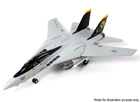 RISCO / DENT - F-14 Tomcat gêmeo Ducted Fan EPO 1.000 milímetros (PNF)