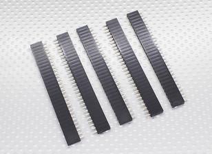 1x30P Pin Socket - 2,54 milímetros de Pitch (5pcs / bag)